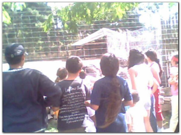 foto-2-zoo-batan-verano-para-todos
