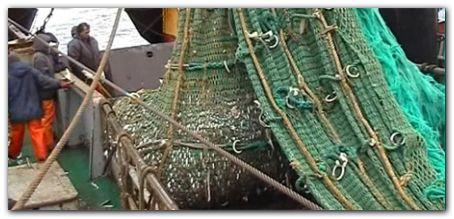 pesca_merluza_mdp