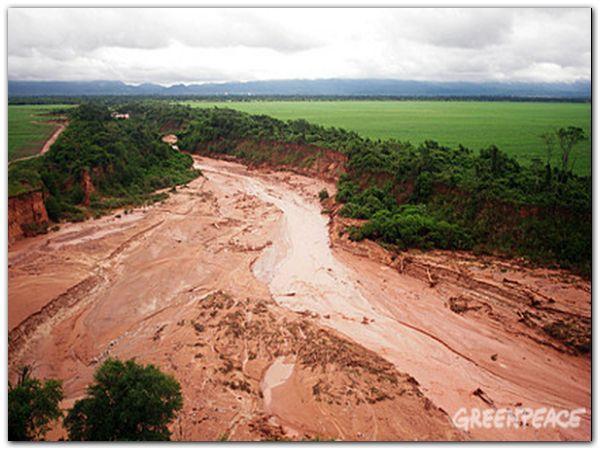 Zona agrícola, desmontada sobre la ladera del río, con escasa co