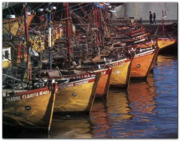 lanchas-pesqueras