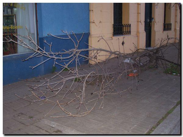 fpn-calle-rama-100_0867