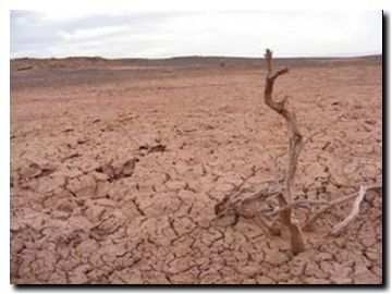 AR desertificacion
