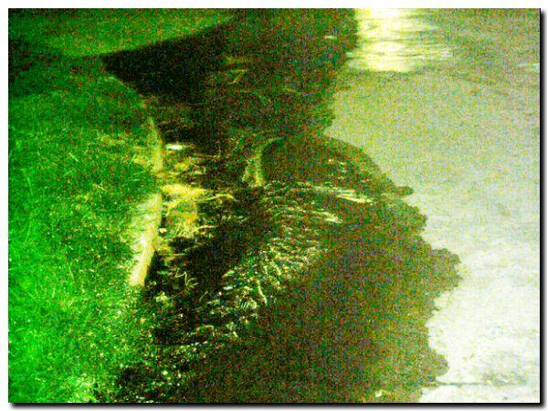 agua-a-la-calle-05