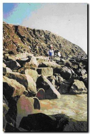 playas-mar del plata-contaminadas